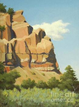 A Face in New Mexico by Phyllis Andrews