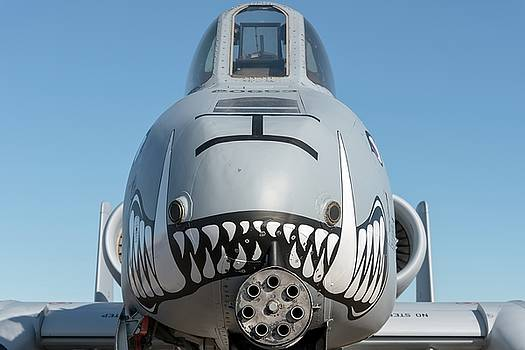 A face only ground troops can love - 2017 Christopher Buff, www.Aviationbuff.com by Chris Buff