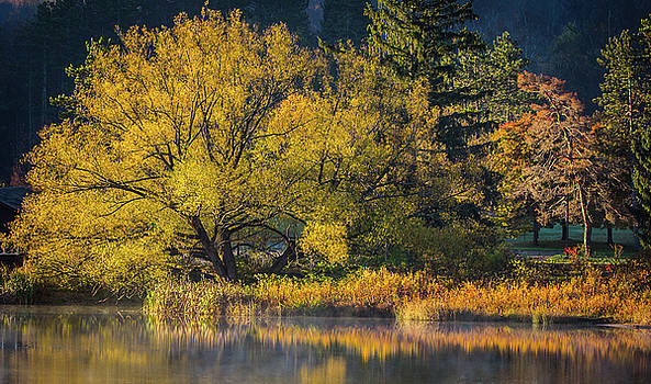 A Fall Day  by David Johnson