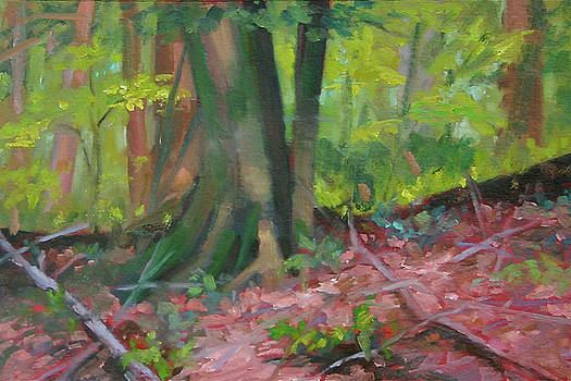 A Favorite Place by Elaine Hurst