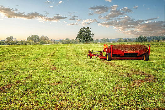 A Field at Sunrise by Lars Lentz