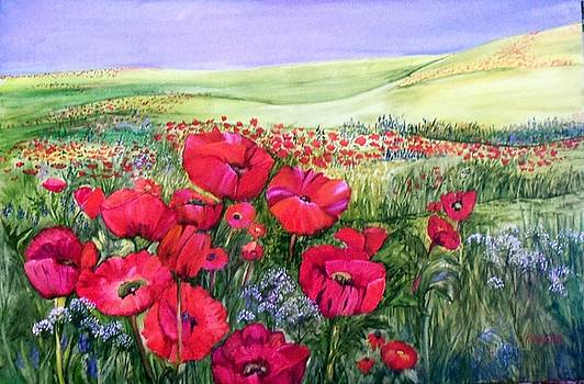 A Field of Poppies by Marsha Woods