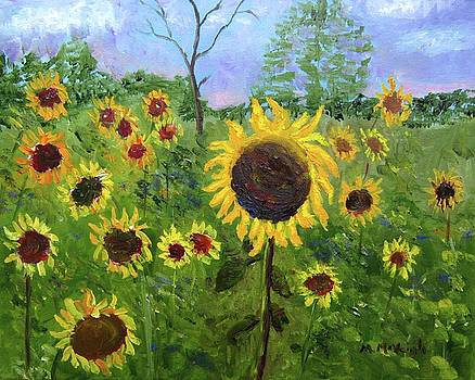 A Field Of Sunflowers by Marita McVeigh