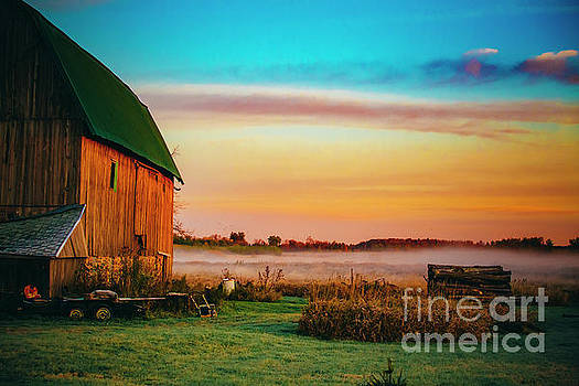A Foggy Morning in Wisconsin by Katya Horner