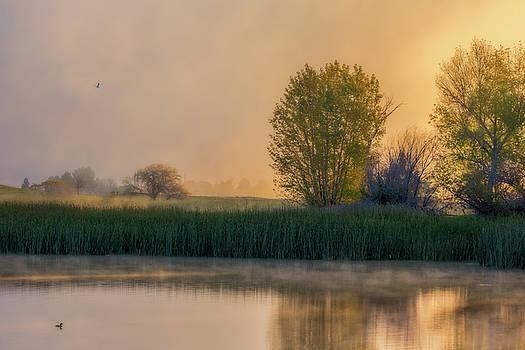 Marc Crumpler - A Foggy Sunrise