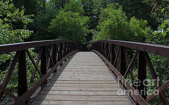 Barbara McMahon - A Footbridge To The Woods