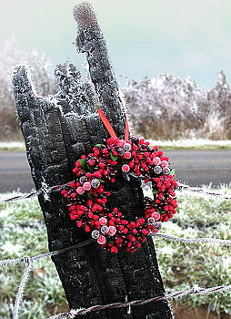A Frosty December Morning by Patricia Whitaker
