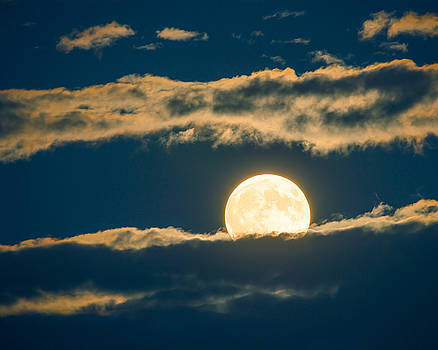 A full moon ascends behind clouds by Paul Duncan