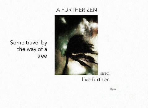 A Further Zen  by Steven Digman