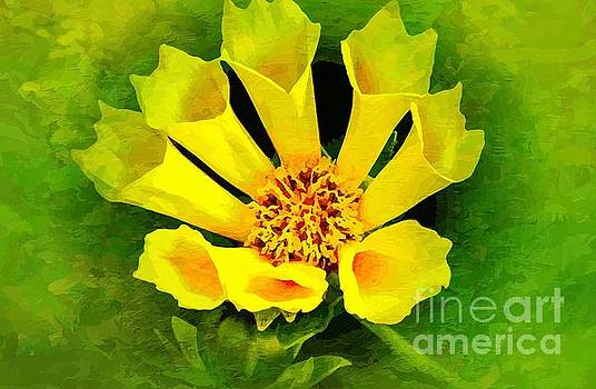 A Fusion of Yellow and Green by Clive Littin