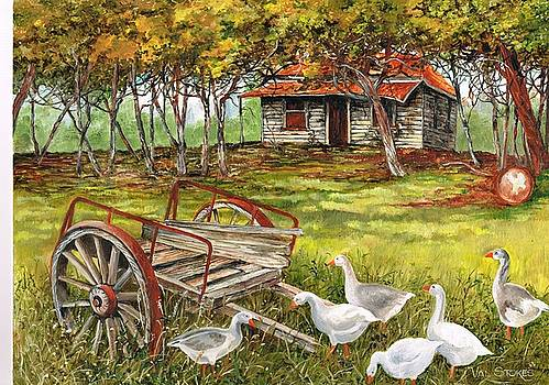 A gaggle of geese by Val Stokes