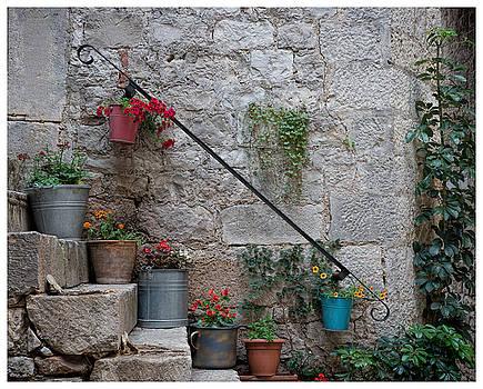 A Garden on my Steps by Eric  Bjerke Sr