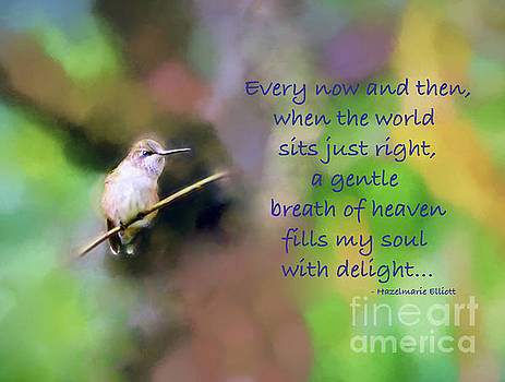 A Gentle Breath of Heaven by Kerri Farley
