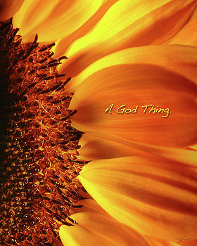 A God Thing-2 by Shevon Johnson
