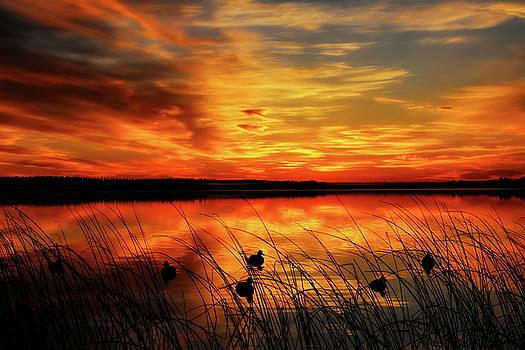 Dale Kauzlaric - A Golden Sunrise Duck Hunt
