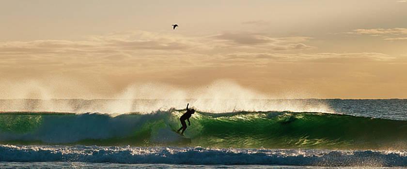 Odille Esmonde-Morgan - A Golden Surfing Moment