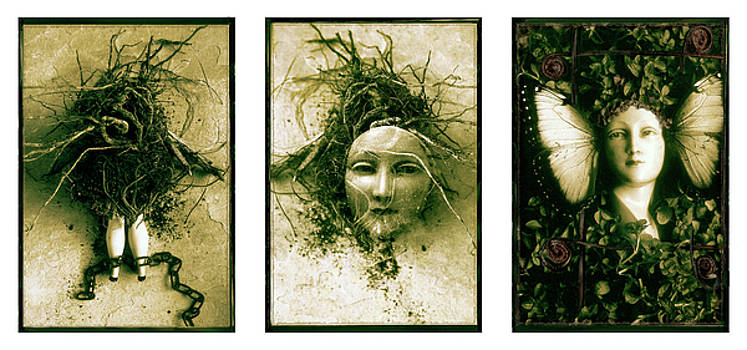 A Graft In Winter Triptych by David Chasey