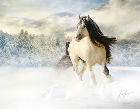 A Gypsy Winter Journey by Jamie Mammano