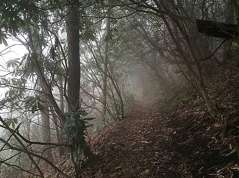 A haunted trail by William Sullivan