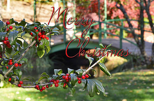 A Holly Christmas by Nena Pratt