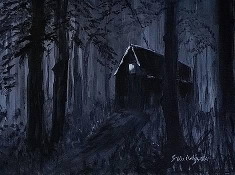 A Light in the Darkness by Sallie Wysocki