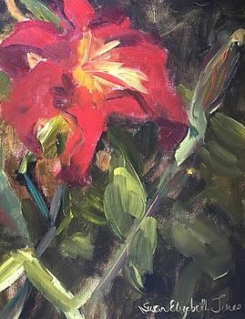 A Lily Among Zinnias by Susan E Jones