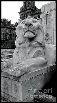 A Lion of the Cenotaph at George Square by Joan-Violet Stretch