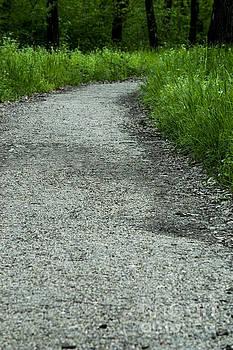 A little trail by Sonya Staneva