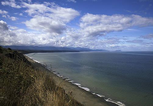 A Long View by Jane Eleanor Nicholas