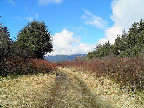 A long walk by Ida Eriksen