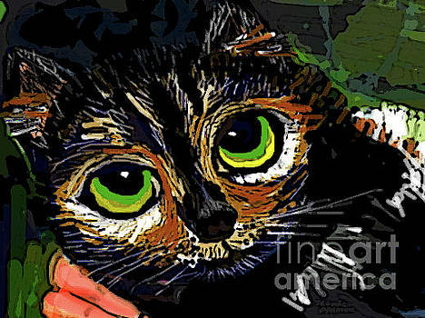A Loving Lap Cat by Jeannie Allerton