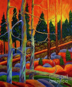 A magical forest 2 by Veikko Suikkanen
