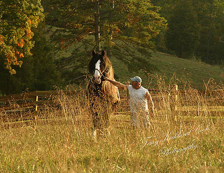 Terry Kirkland Cook - A Man and His Horse
