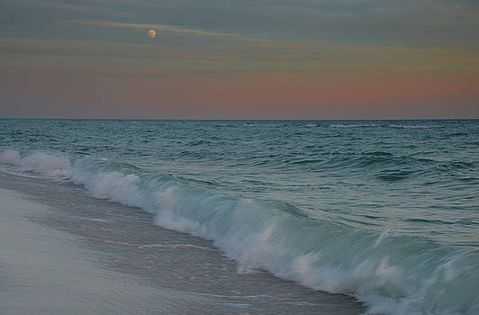 A Moonlit Evening on the Beach by Renee Hardison