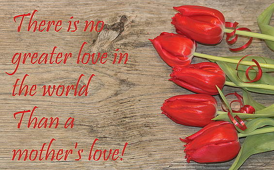 A Mother's Love by Sheila Brown