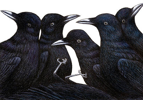 A Murder of Crows by Don McMahon
