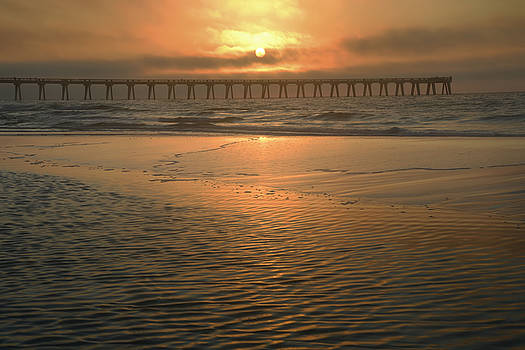 A New Day Dawning by Renee Hardison