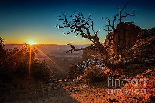 A New Day Dawns by Kristal Kraft