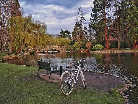 A Nice Day for a Bike Ride by Steffani Cameron