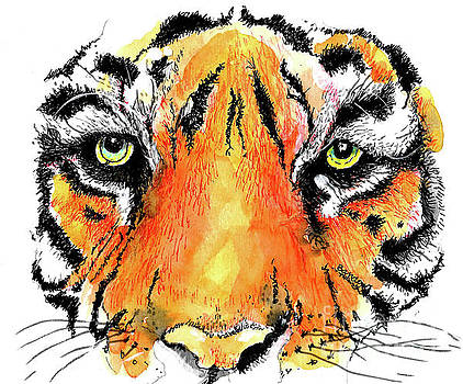 A Nice Tiger by Terry Banderas