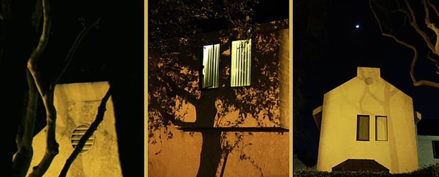 A night street triptych by Natalya Shvetsky