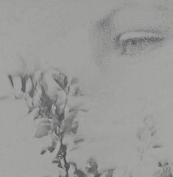 Michael Rutland - A Painters Eye