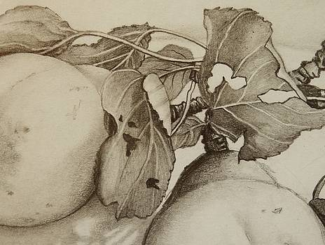 A pair of Pears by Catherine Robertson