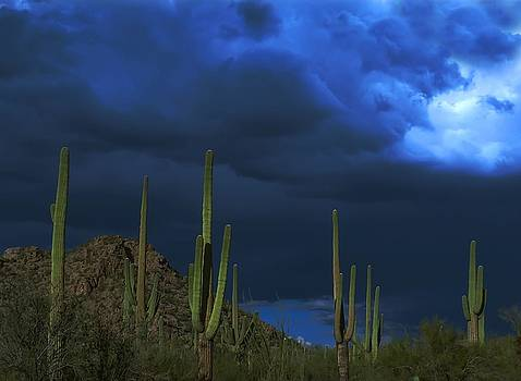 A Passing Storm  by Kimmi Craig