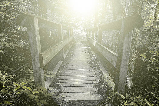 A Path Into the Light by Lee Wellman