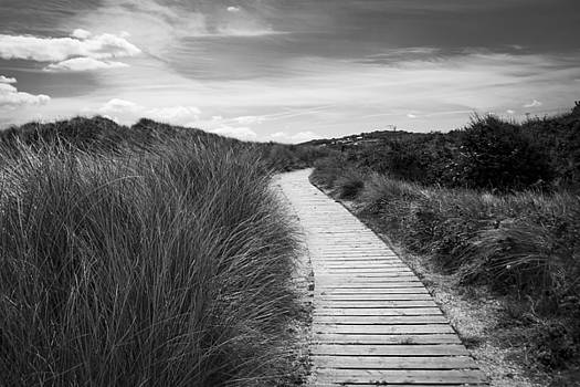 A Path Through The Dunes by Nigel Spencer