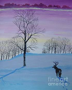 A Peaceful Winter Sunset by Norm Starks