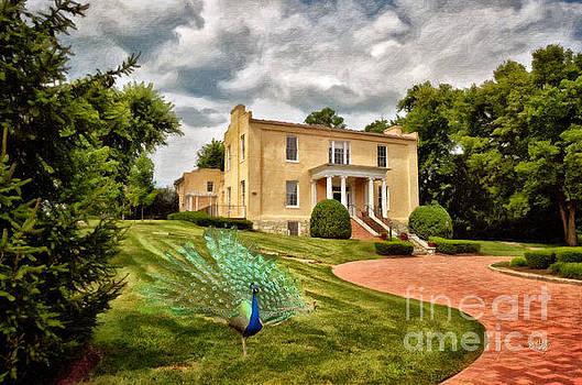 Lois Bryan - A Peacock At Beallair