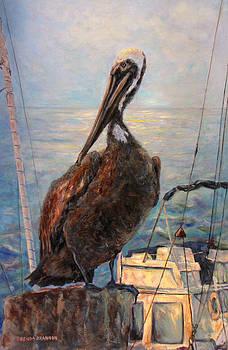 A Pelican's Life by Brenda Brannon