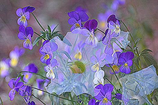 A Petunia nestled in a field of Violas by Sherry McKellar